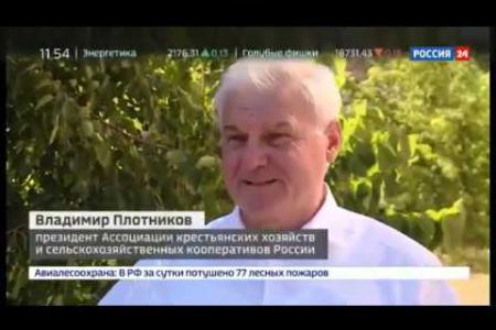 Фермерский рынок, Россия 24, 8 июля 2020 г.
