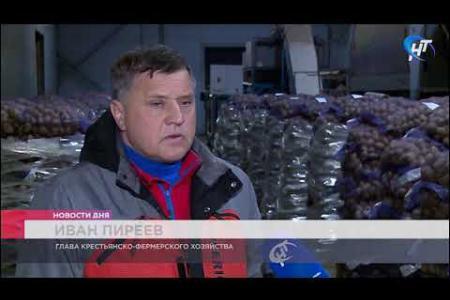 Новгородский фермер Иван Пиреев подготовил партию продуктовых наборов для пенсионеров